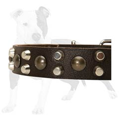 Highly reliable leather collar for your doggy