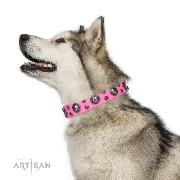 Fancy walking adorned dog collar of durable leather