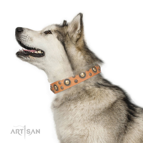Comfortable wearing decorated dog collar of fine quality material