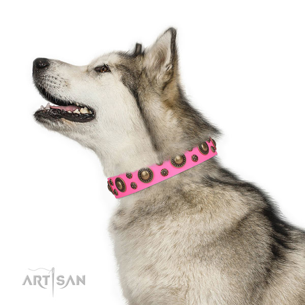 Stylish walking embellished dog collar of best quality material