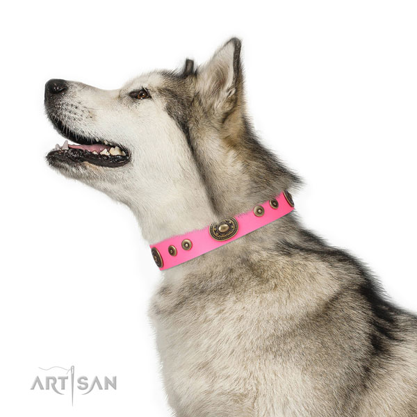 Incredible decorated natural leather dog collar for comfortable wearing