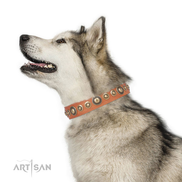 Reliable buckle and D-ring on natural leather dog collar for daily use