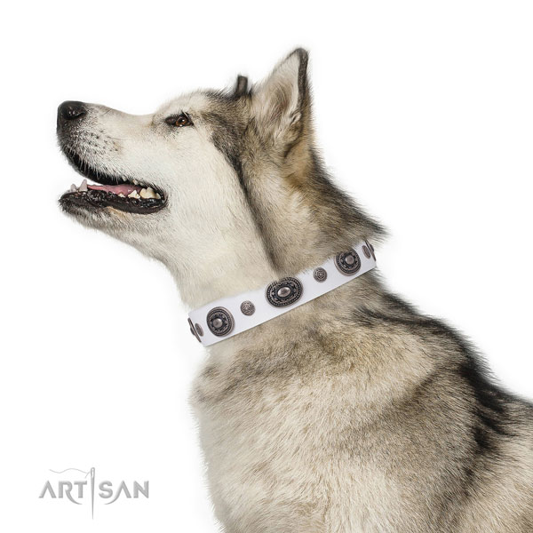 Natural leather dog collar with rust resistant buckle and D-ring for easy wearing