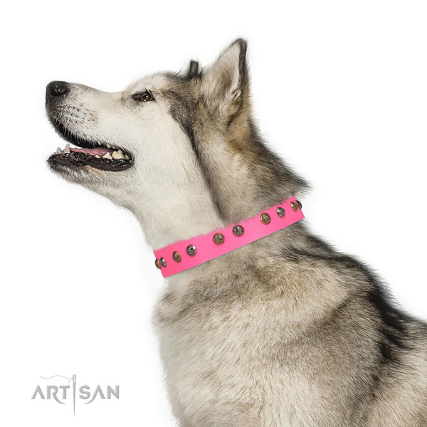 Comfortable wearing adorned dog collar made of high quality natural leather