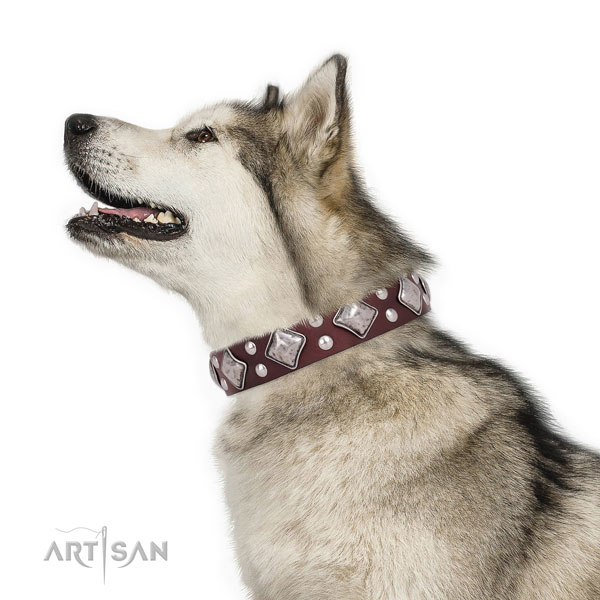 Basic training embellished dog collar made of top rate natural leather