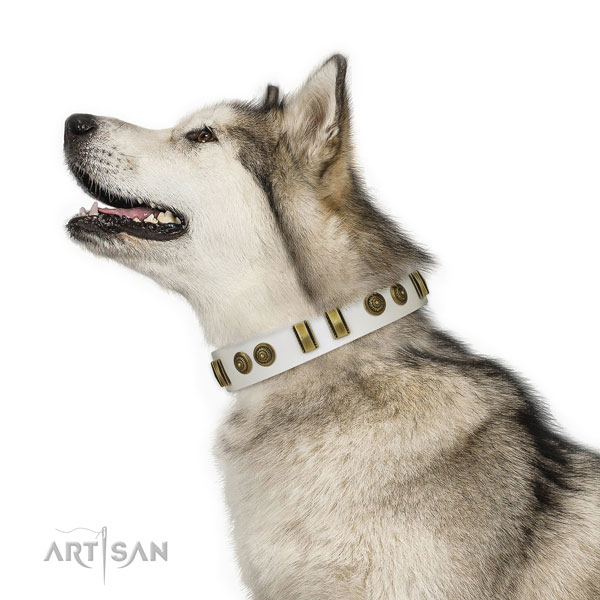 Everyday use dog collar of leather with fashionable adornments