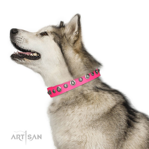 Full grain genuine leather collar with corrosion proof buckle for your beautiful pet