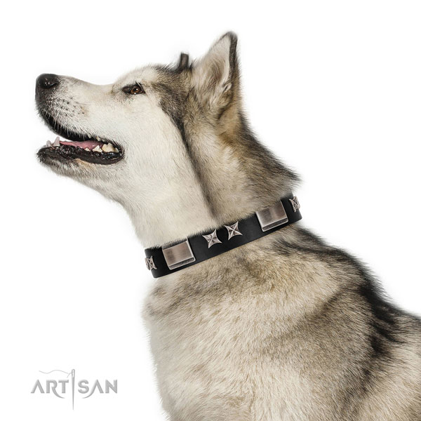 Easy wearing quality natural leather dog collar with studs