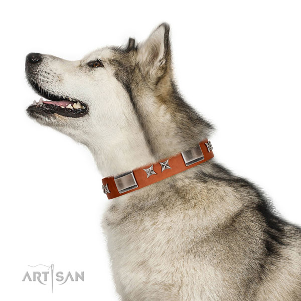 Comfortable wearing gentle to touch natural leather dog collar with adornments