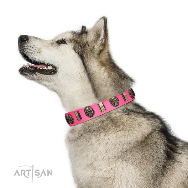 Corrosion proof buckle on natural genuine leather dog collar for easy wearing