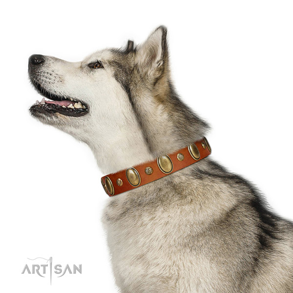Adjustable leather dog collar with reliable buckle