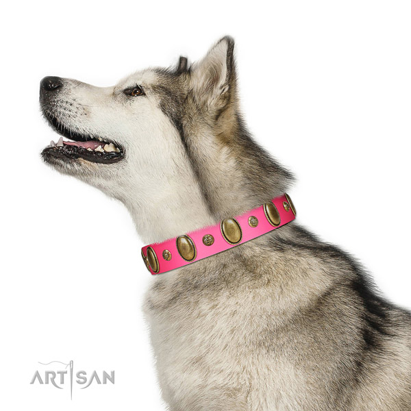 Fancy walking quality full grain genuine leather dog collar with decorations