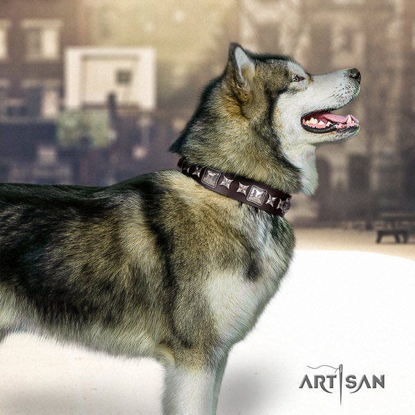 Malamute awesome decorated full grain leather dog collar for everyday use