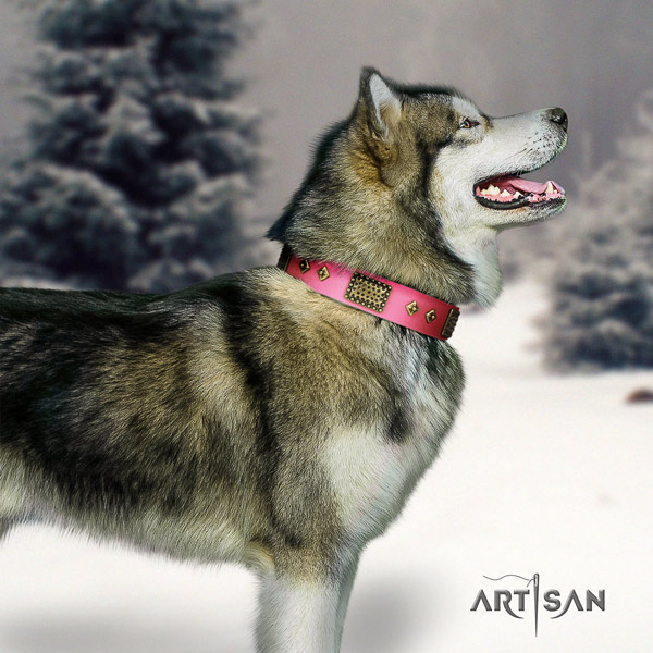 Malamute extraordinary embellished natural leather dog collar for comfy wearing