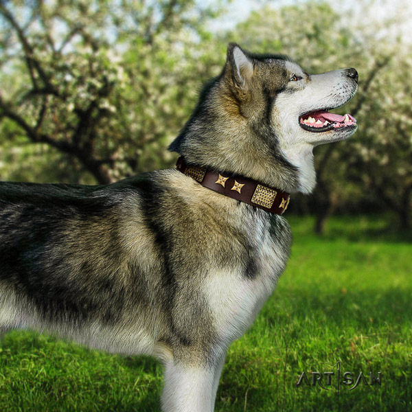 Malamute unusual decorated natural leather dog collar for handy use