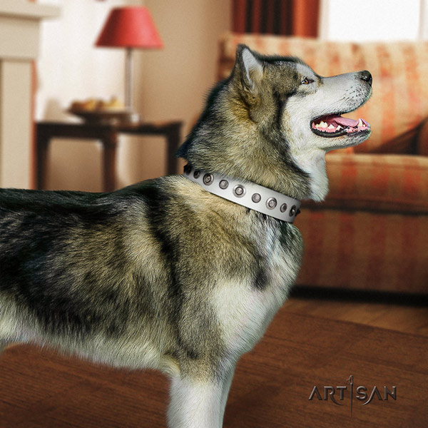 Malamute stylish decorated natural leather dog collar for easy wearing