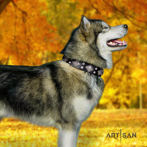 Malamute unusual decorated genuine leather dog collar for daily use