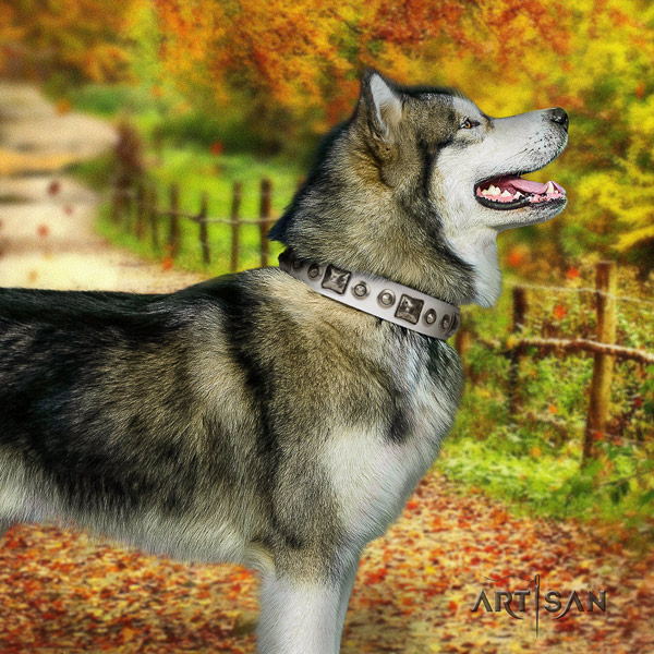 Malamute exquisite decorated leather dog collar for comfy wearing