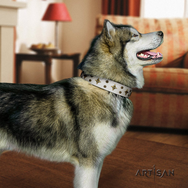Malamute fashionable embellished full grain leather dog collar for handy use