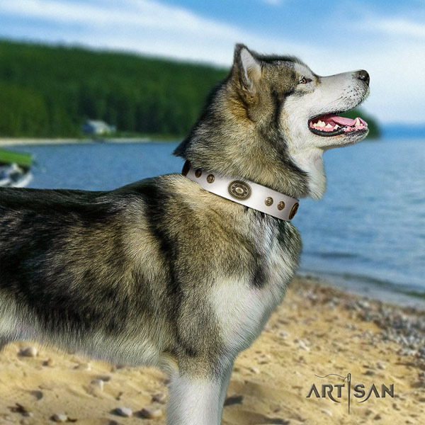 Malamute incredible adorned leather dog collar for easy wearing