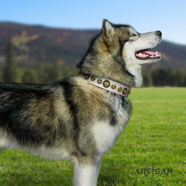 Malamute inimitable adorned leather dog collar for easy wearing