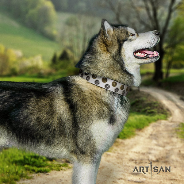 Malamute impressive embellished full grain leather dog collar for everyday walking