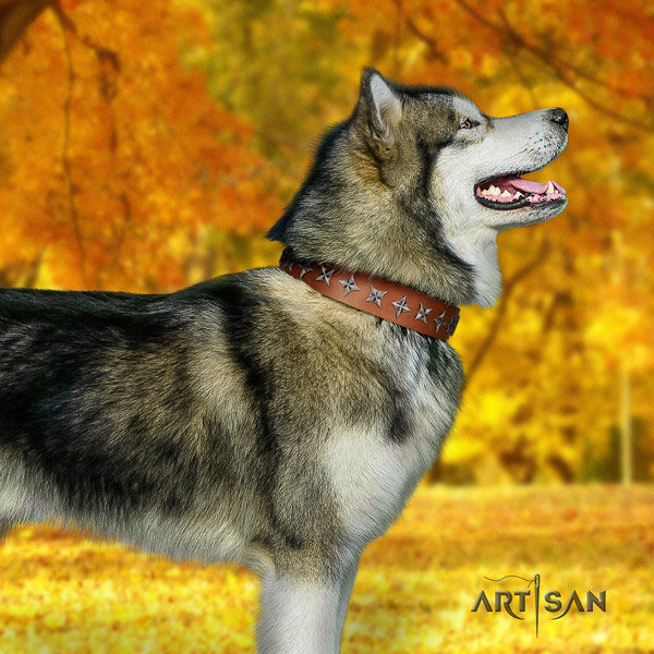 Malamute incredible decorated genuine leather dog collar for easy wearing