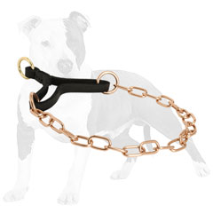 Martingale dog collar for safe training