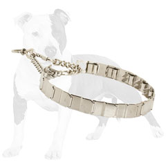 Stainless steel Neck     Tech dog collar