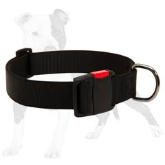 Long Servicing Dog Collar for Any Weather
