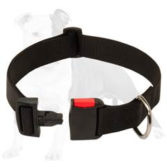 Quick to Lock Canine Collar Suitable for Rainy Weather