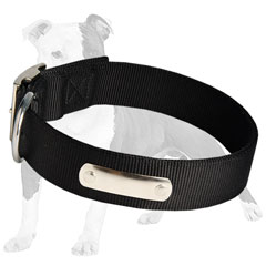 Practical Nylon Canine Collar for Rainy Weather