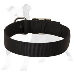 probably the best training nylon dog collar
