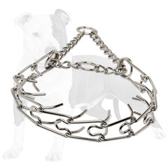 Pinch dog collar safe and dog-friendly