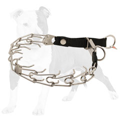 Pinch dog collar easy in use