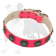 Quality Pink Leather Collar for Walking