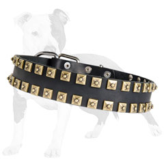 Fashion leather dog collar decorated with square studs