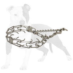 Strong steel pinch dog collar with chrome plating