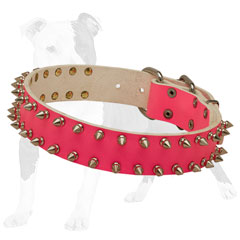 Pink leather collar adorned with silver spikes