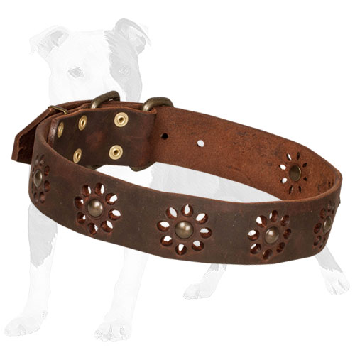Brown leather dog collar with camomile pattern