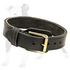 Comfy dog collar with fur protection plate
