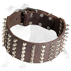 Supple leather collar adorned with silver spikes and pyramids