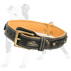 Exclusively braided leather dog collar
