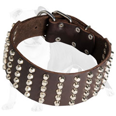 Designer leather dog collar decorated with pyramids