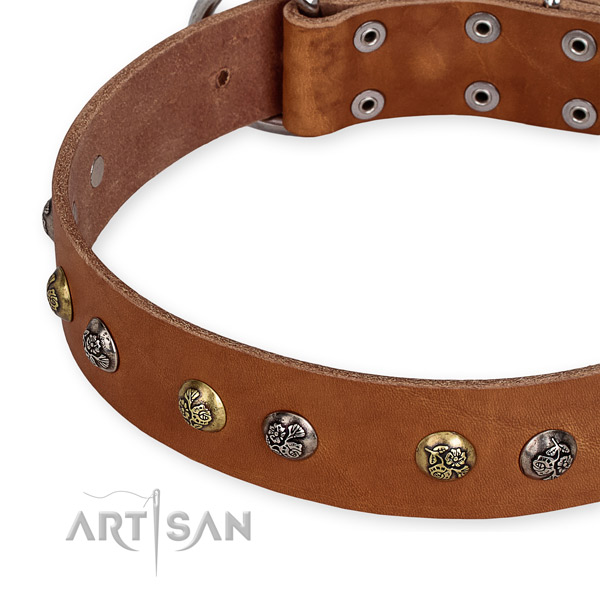 Gentle to touch full grain natural leather dog collar created for comfy wearing