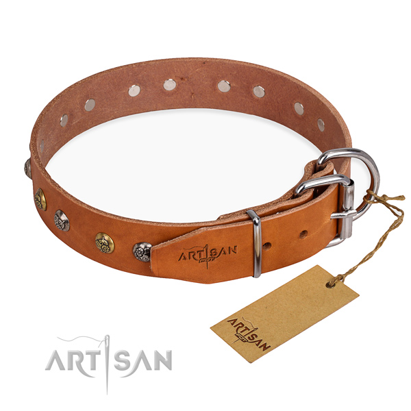Walking stunning dog collar with reliable traditional buckle