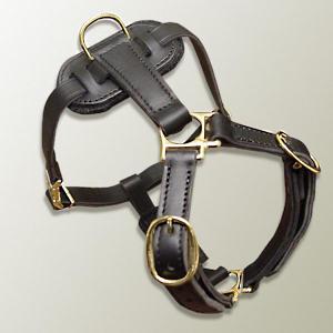 hand-made leather dog harness