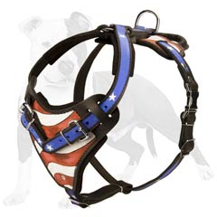 Dog attack training harness