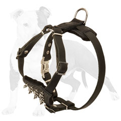 Y-shaped leather dog harness with nickel plated spikes
