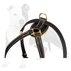 Non-toxic natural materials used for this dog harness